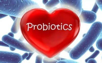 Dr. Tóth Géza: A pre- és probiotikumokról